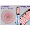 germini doos bridal kimsey