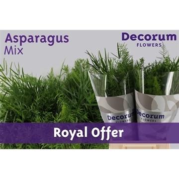 Asparagus green mix 40cm DC (Royal offer)