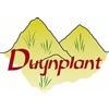 Duynplant-BV